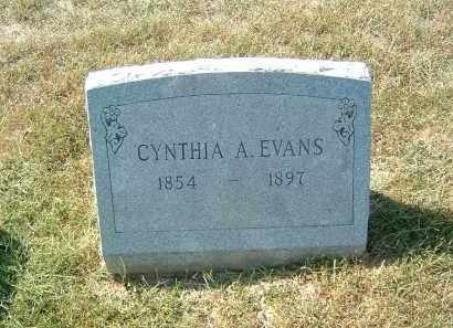EVANS, CYNTHIA - Gallia County, Ohio | CYNTHIA EVANS - Ohio Gravestone Photos