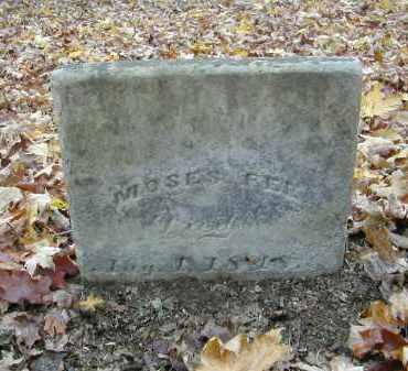 FEE, MOSES - Gallia County, Ohio | MOSES FEE - Ohio Gravestone Photos