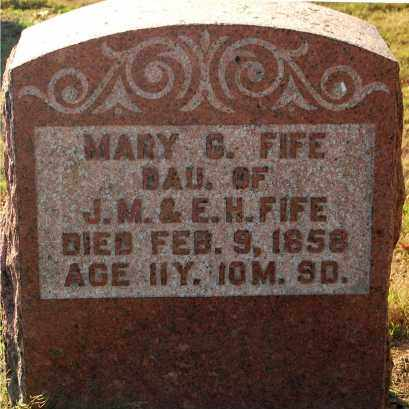 FIFE, MARY G. - Gallia County, Ohio | MARY G. FIFE - Ohio Gravestone Photos