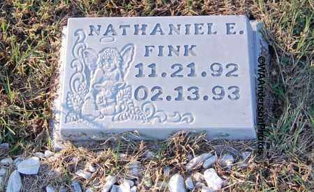 FINK, NATHANIEL E - Gallia County, Ohio | NATHANIEL E FINK - Ohio Gravestone Photos