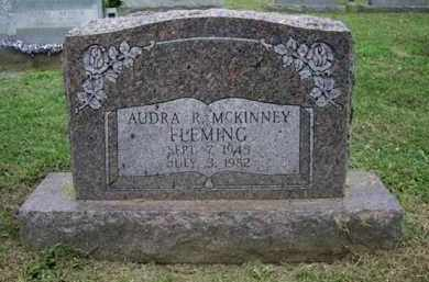 FLEMING, AUDREY - Gallia County, Ohio | AUDREY FLEMING - Ohio Gravestone Photos