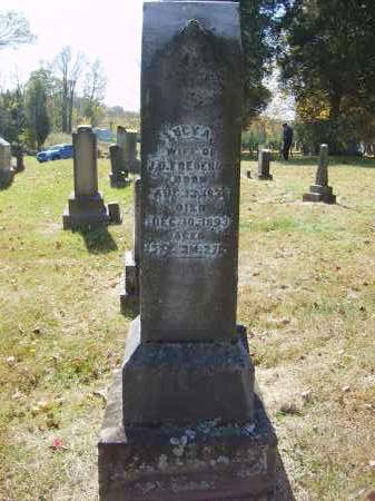 FREDERICK, LUCY - Gallia County, Ohio | LUCY FREDERICK - Ohio Gravestone Photos
