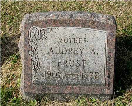 FROST, AUDREY A - Gallia County, Ohio | AUDREY A FROST - Ohio Gravestone Photos