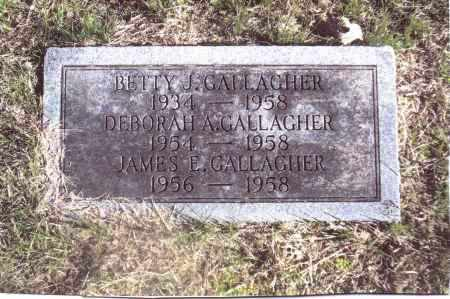 GALLAGHER, JAMES E. - Gallia County, Ohio | JAMES E. GALLAGHER - Ohio Gravestone Photos