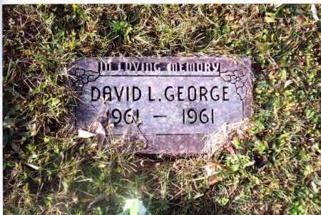 GEORGE, DAVID L. - Gallia County, Ohio | DAVID L. GEORGE - Ohio Gravestone Photos
