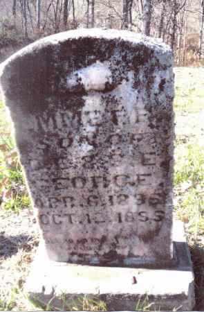 GEORGE, EMMETT F. - Gallia County, Ohio | EMMETT F. GEORGE - Ohio Gravestone Photos