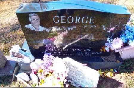 GEORGE, HAROLD - Gallia County, Ohio | HAROLD GEORGE - Ohio Gravestone Photos