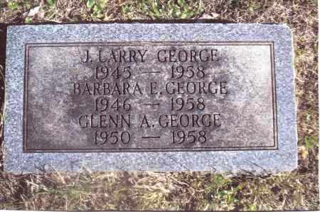 GEORGE, J. LARRY - Gallia County, Ohio | J. LARRY GEORGE - Ohio Gravestone Photos