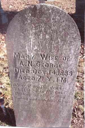 RIFE GEORGE, MARY - Gallia County, Ohio | MARY RIFE GEORGE - Ohio Gravestone Photos