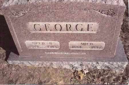 GEORGE, MILO - Gallia County, Ohio | MILO GEORGE - Ohio Gravestone Photos