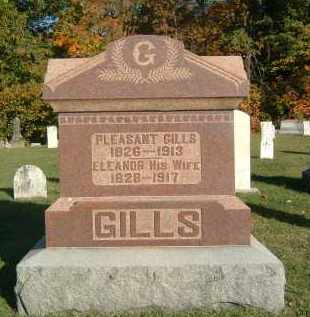 GILLS, ELEANOR - Gallia County, Ohio | ELEANOR GILLS - Ohio Gravestone Photos
