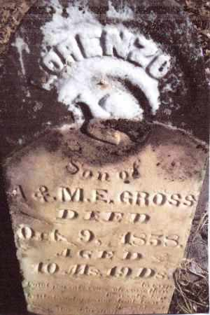 GROSS, LORENZO - Gallia County, Ohio | LORENZO GROSS - Ohio Gravestone Photos