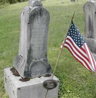 GUY, ALVA - Gallia County, Ohio | ALVA GUY - Ohio Gravestone Photos