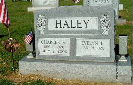 HALEY, CHARLES M - Gallia County, Ohio | CHARLES M HALEY - Ohio Gravestone Photos