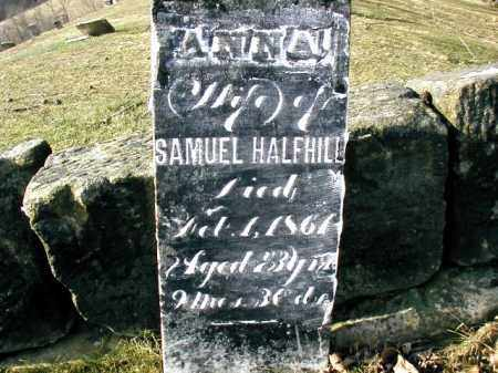 LEMLEY HALFHILL, ANNA - Gallia County, Ohio | ANNA LEMLEY HALFHILL - Ohio Gravestone Photos