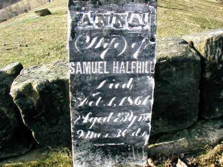 HALFHILL, ANNA - Gallia County, Ohio | ANNA HALFHILL - Ohio Gravestone Photos