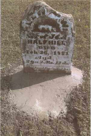 HALFHILL, LEWIS - Gallia County, Ohio | LEWIS HALFHILL - Ohio Gravestone Photos