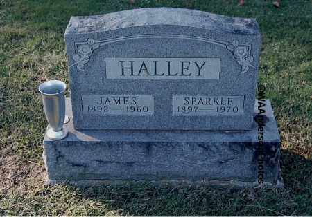 HALLEY, JAMES - Gallia County, Ohio | JAMES HALLEY - Ohio Gravestone Photos