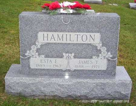 HAMILTON, JAMES THOMAS - Gallia County, Ohio | JAMES THOMAS HAMILTON - Ohio Gravestone Photos