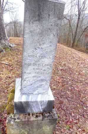 HANNAH, LOVE - Gallia County, Ohio | LOVE HANNAH - Ohio Gravestone Photos