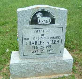 HARIS, CHARLES ALLEN - Gallia County, Ohio | CHARLES ALLEN HARIS - Ohio Gravestone Photos