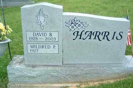 HARRIS, MILDRED P - Gallia County, Ohio | MILDRED P HARRIS - Ohio Gravestone Photos