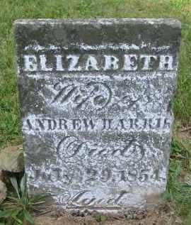 HARRIS, ELIZABETH - Gallia County, Ohio | ELIZABETH HARRIS - Ohio Gravestone Photos