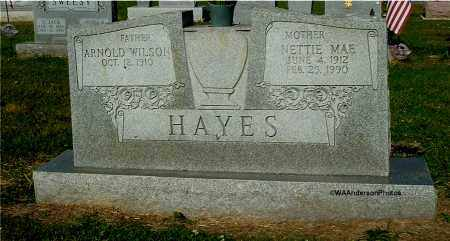 HAYES, NETTIE MAE - Gallia County, Ohio | NETTIE MAE HAYES - Ohio Gravestone Photos