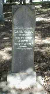 HESS, CARL - Gallia County, Ohio | CARL HESS - Ohio Gravestone Photos