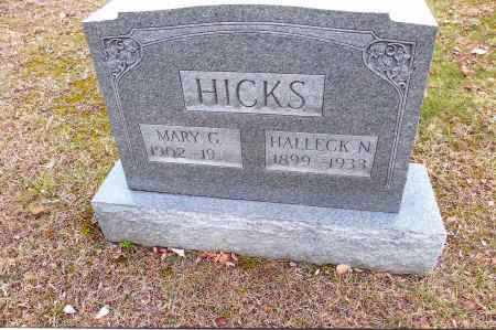 HICKS, MARY - Gallia County, Ohio | MARY HICKS - Ohio Gravestone Photos