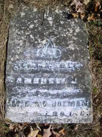 HOLMAN, ANDREW - Gallia County, Ohio | ANDREW HOLMAN - Ohio Gravestone Photos