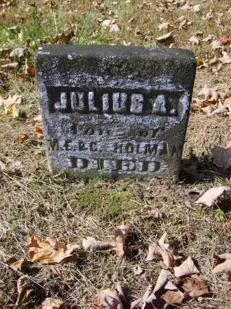 HOLMAN, JULIUS - Gallia County, Ohio | JULIUS HOLMAN - Ohio Gravestone Photos
