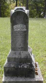 HOLMES, ANDREW - Gallia County, Ohio | ANDREW HOLMES - Ohio Gravestone Photos