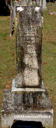 HOOPER, CLARINDA - Gallia County, Ohio | CLARINDA HOOPER - Ohio Gravestone Photos
