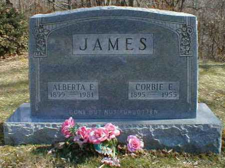 JAMES, ALBERTA - Gallia County, Ohio | ALBERTA JAMES - Ohio Gravestone Photos