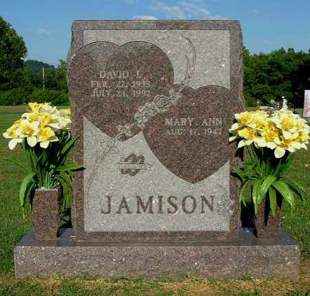 JAMISON, MARY ANN - Gallia County, Ohio | MARY ANN JAMISON - Ohio Gravestone Photos