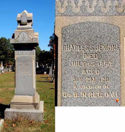 JENKINS, CHARLES S - Gallia County, Ohio | CHARLES S JENKINS - Ohio Gravestone Photos