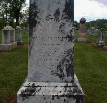SCOTT JENKINS, CYNTHIA - Gallia County, Ohio | CYNTHIA SCOTT JENKINS - Ohio Gravestone Photos