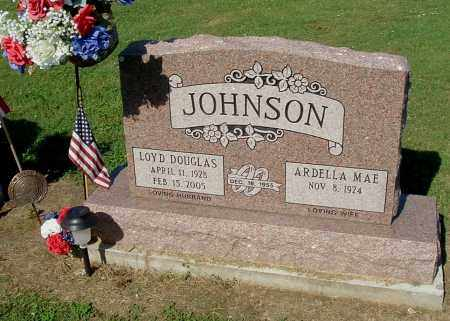 JOHNSON, LOYD D - Gallia County, Ohio | LOYD D JOHNSON - Ohio Gravestone Photos