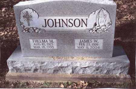JOHNSON, JAMES W. - Gallia County, Ohio | JAMES W. JOHNSON - Ohio Gravestone Photos