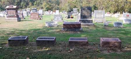 JOHNSTON, FAMILY SECTION - Gallia County, Ohio   FAMILY SECTION JOHNSTON - Ohio Gravestone Photos