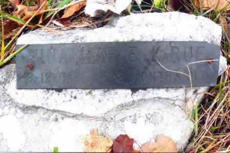 LARUE, TINA MARIE - Gallia County, Ohio | TINA MARIE LARUE - Ohio Gravestone Photos