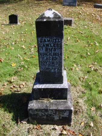 LAWLESS, SAMUEL - Gallia County, Ohio | SAMUEL LAWLESS - Ohio Gravestone Photos