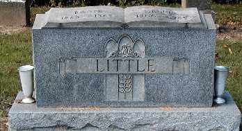 LITTLE, NELLIE - Gallia County, Ohio | NELLIE LITTLE - Ohio Gravestone Photos