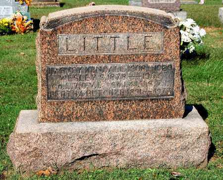 LITTLE, BERTHA - Gallia County, Ohio | BERTHA LITTLE - Ohio Gravestone Photos