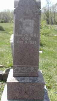 LUTZ, MARY - Gallia County, Ohio | MARY LUTZ - Ohio Gravestone Photos