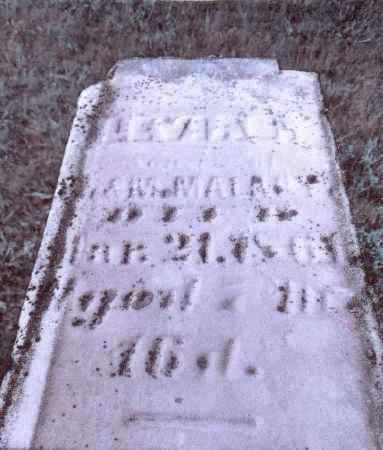 MALABY, LEVIAS - Gallia County, Ohio | LEVIAS MALABY - Ohio Gravestone Photos