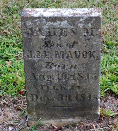 MAUCK, JAMES M - Gallia County, Ohio | JAMES M MAUCK - Ohio Gravestone Photos