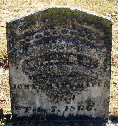 MAUCK, WILLIAM H - Gallia County, Ohio | WILLIAM H MAUCK - Ohio Gravestone Photos