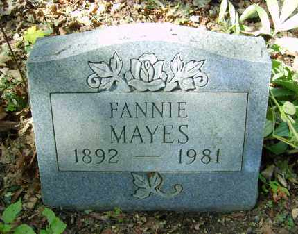 MAYES, FANNIE - Gallia County, Ohio | FANNIE MAYES - Ohio Gravestone Photos
